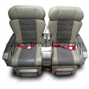 Aircraft Double Business Class Seat
