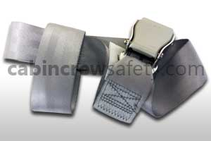 503704-401-3038 - AMSAFE Infant Safety Belt Silver