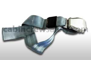 502761-401-6331 - AMSAFE Passenger Loop Belt Assembly (Aqua)
